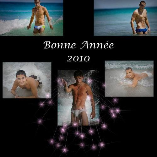 bonne-annee-2010_1_.jpg
