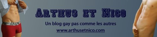 www.arthusetnico.com